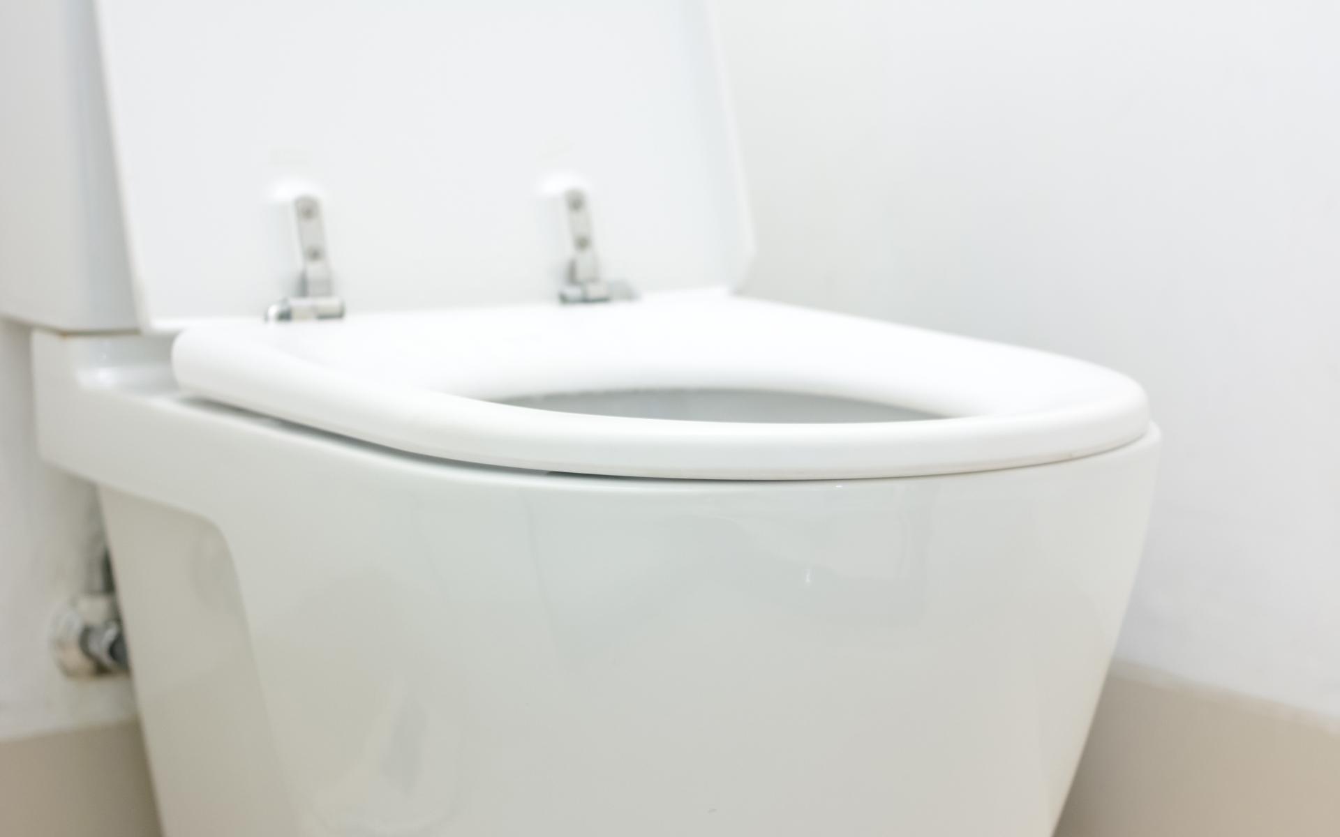 Coquitlam  Toilet Repair